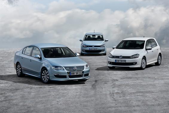 Die drei BlueMotion Modelle auf einen Blick: Passat, Polo und Golf (Forto: Volkswagen)